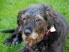 bella5-2010-05-24