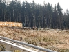 blomberg-blitz-2010-04-05-24