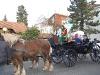 fasnet-radolfzell-2011-03-06-043