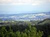 homburg-2009-05-31-02
