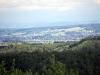 homburg-2009-05-31-03