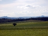 homburg-2009-05-31-10