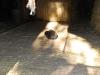 lochmuhle-2010-03-07-43