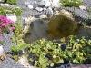teich-2010-05-22-8