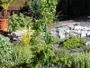 teich-2010-05-24-13
