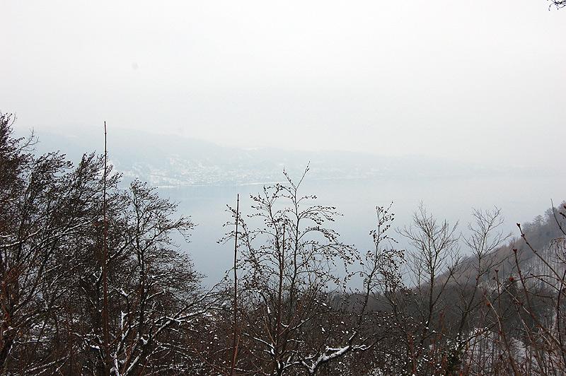 bodenwald24