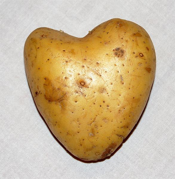 Eine herzliche Kartoffel